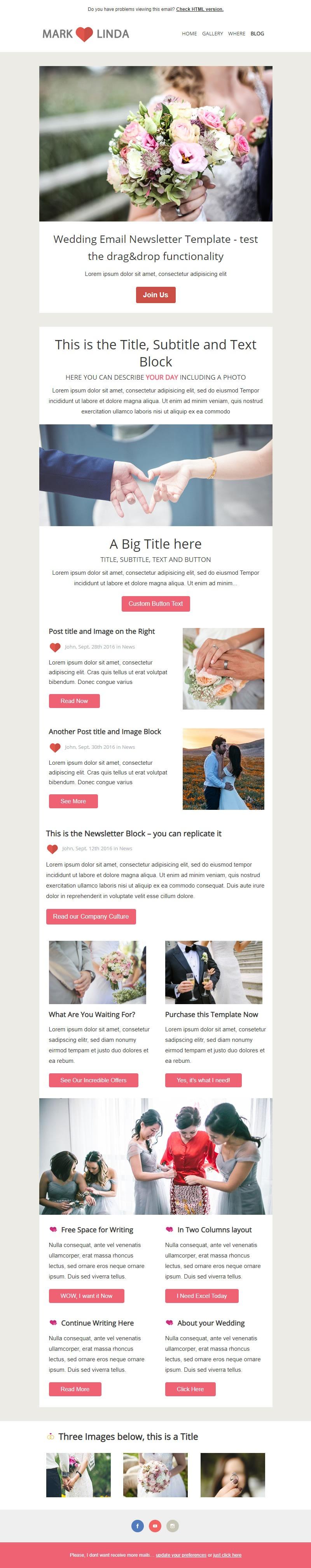 Elegant Responsive MailChimp Theme